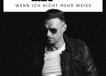 Cover_DIZE feat. Aurii - Wenn ich nicht mehr weiss