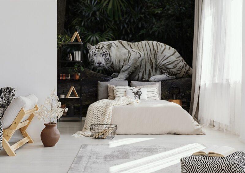 Weißer Tiger auf Fototapete im Schlafzimmer