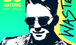 cover_DJ ANTOINE & CAELU - WASTED